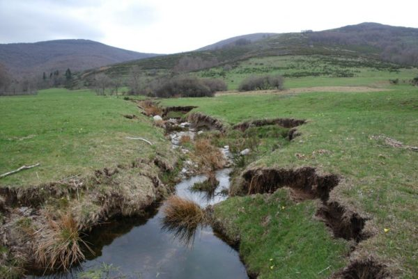 Érosion de berge - Cours d'eau de tête de bassin